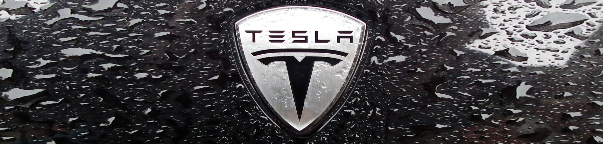 CLMS - Manufacturer - Tesla
